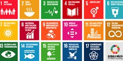 De 17 globala målen för hållbar utveckling.