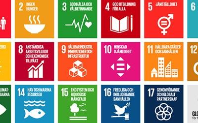 De globala målen för en hållbar utveckling