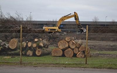 Nya badhusets tomt har stängslats in och marken förbereds inför byggnationen som börjar i månadsskiftet januari/februari 2020.