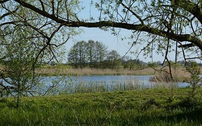 Det finns många åtgärder som kanförbättra vattenkvaliteten i våra vattendrag, sjöar och i Hanöbukten.