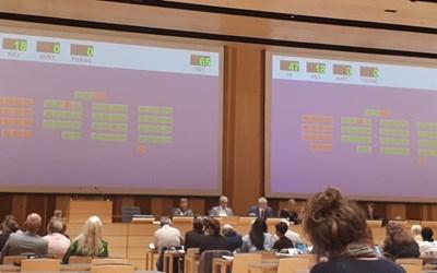 Gröna och röda markeringar visar omröstningsresultatet i sessionssalen.