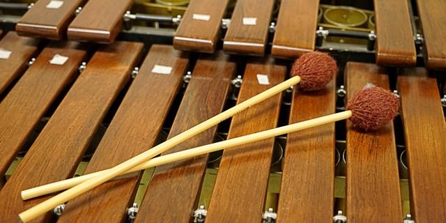 Musikskolans externa verksamhet påverkas av Covid-19