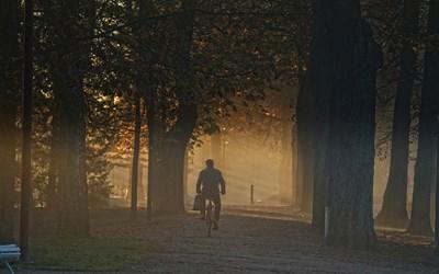 Det är billigt, hälsofrämjande och klimatsmart att cykla.
