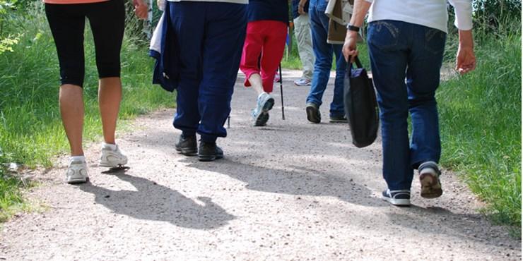 Seniorvandringar vren 2020 - Kristianstads kommun