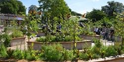 Hälsoträdgården i Tivoliparken. Foto Kristianstads kommun