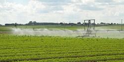 Bevattning av grödor