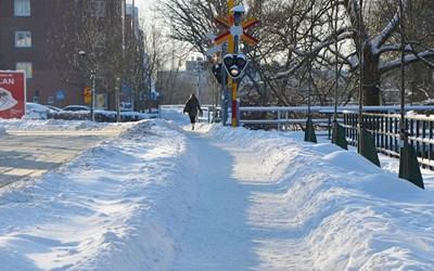 Ibland blir det vinter och snö - även i Skåne.